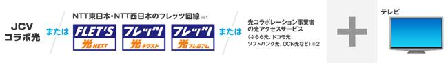 NTT東日本・NTT西日本のフレッツ回線※1 または 光コラボレーション事業者の光アクセスサービス(ぷらら光、ドコモ光、ソフトバンク光、OCN光など)※2 + テレビ